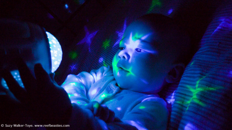 DIY baby sensory