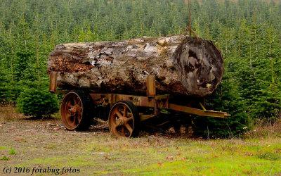 Old Logging Wagon
