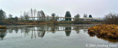 Delta Ponds Bridge