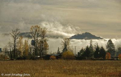 The Fog Bank
