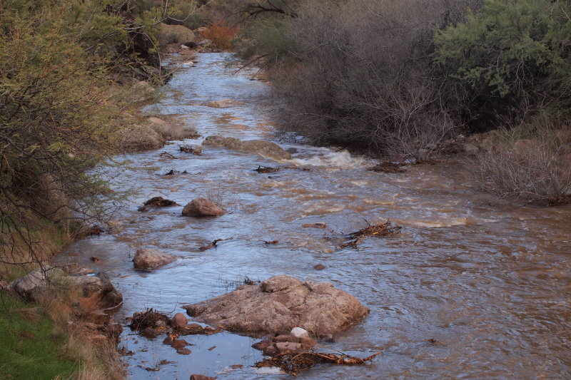 Queen Creek