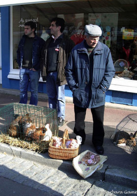 Street vendor with rabbits for sale, St Hilaire