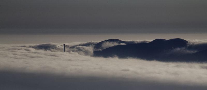 Fog blankets the Bay