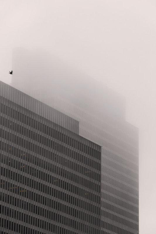 Quiet fog