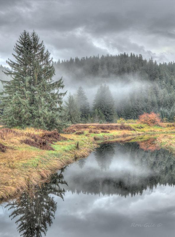 lens test peterson creek-.jpg