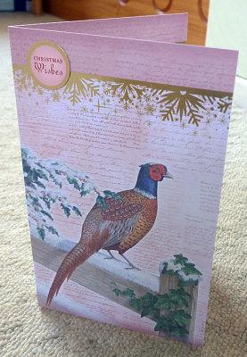 Pheasant on fence