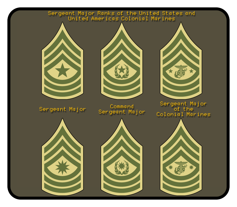 Colonial Marine Rank Infographic