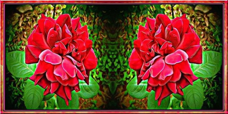 Rose-screened Memories