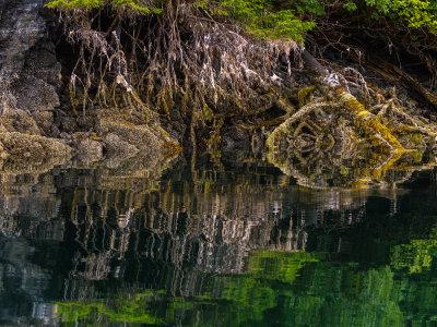 Double Take, Pybus Bay, Alaska, 2013