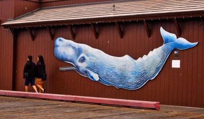 Moby Dick, Stearns Wharf, Santa Barbara, California, 2013
