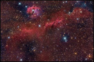 The Seagull nebula - IC 2177