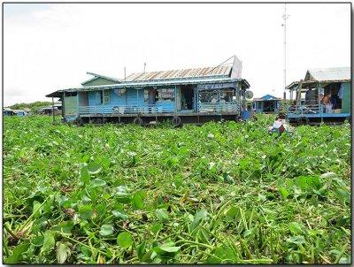 Tonlé Sap Lake 14