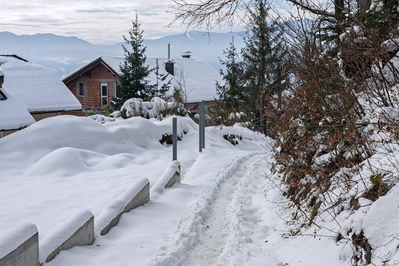 path in the snow (_MG_8615ok.jpg)