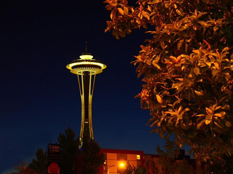 Night Needle Seattle
