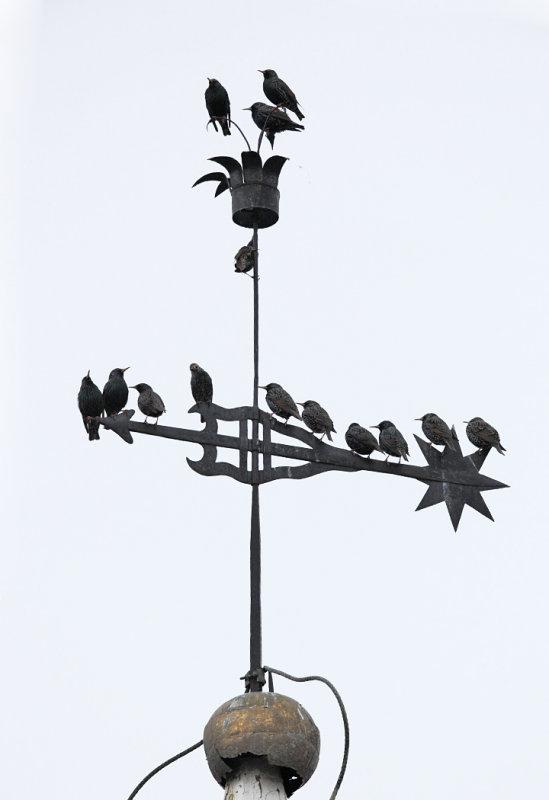 Starling filled Weathervane