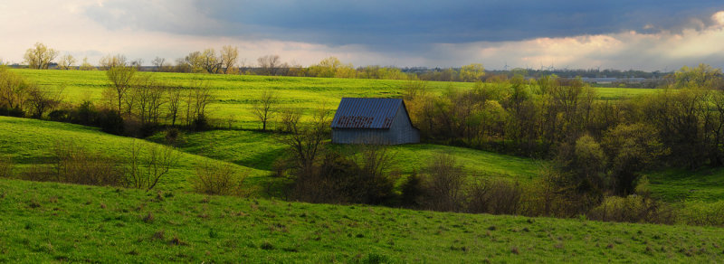 Spring View with Barn
