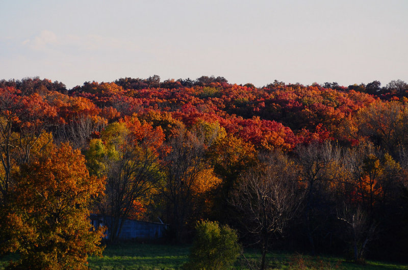 Fall Colors Near Evona