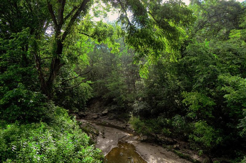 Creek Bed at Elam Bend