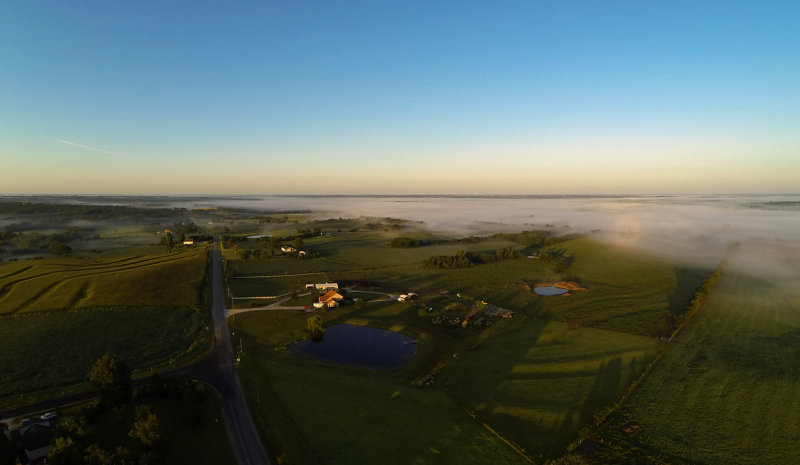 Grand River Morning Fog