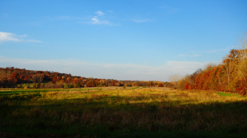 Fall Colors at Elam Bend