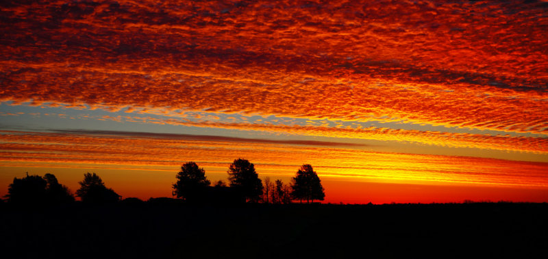 Alto Cumulus Sunrise