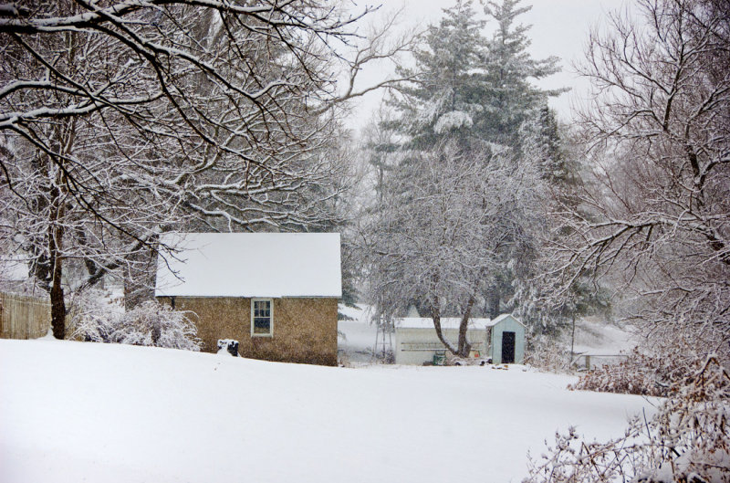 Snow Storm with Barn