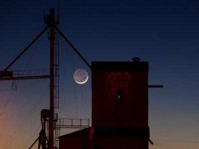 Moon & MFA Elevator