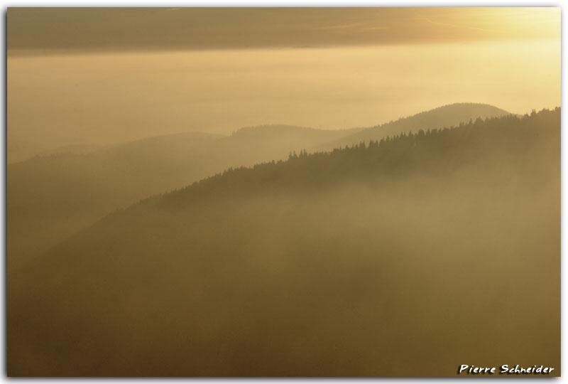 Brouillard au lever du jour au Hohneck