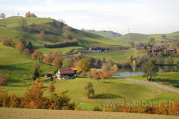 Wilersee (118101)