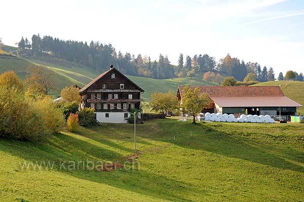 Ziegelhof (118098)