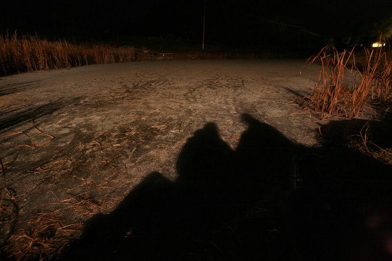 On Brewster Pond