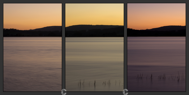 Exe triptych - at Topsham