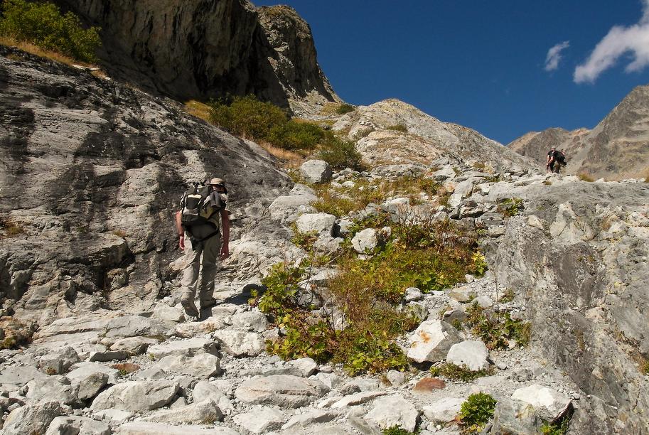 my lovely sherpa