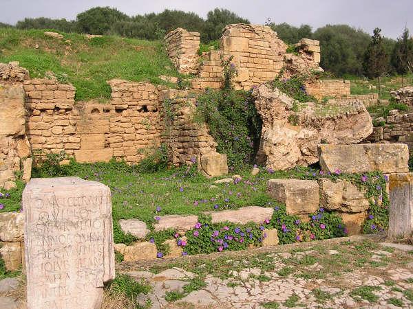 Chellah Roman Ruins