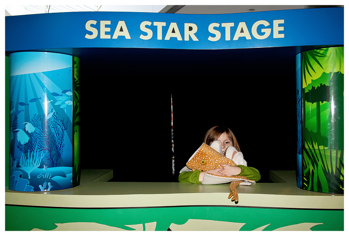 Puppets at the Sea Star Stage