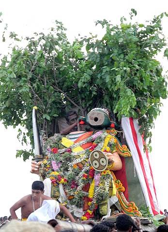 The fight of Simhamukha and Lord Subramanyam also ends with the beheading of this manifestation. Skanda Sashti, Tiruchendur.