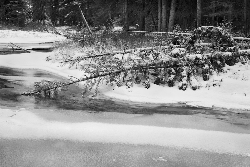 20111124_Banff_0020.jpg