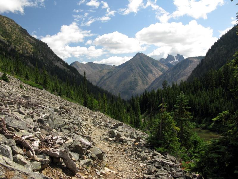 View down Brushy Creek