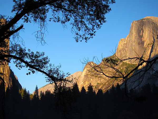 Half Dome at dusk - from meadow #2716-600