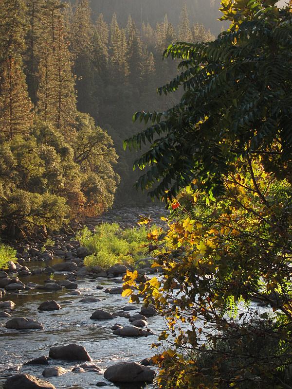 From Yosemite View Lodge balcony #2918-600