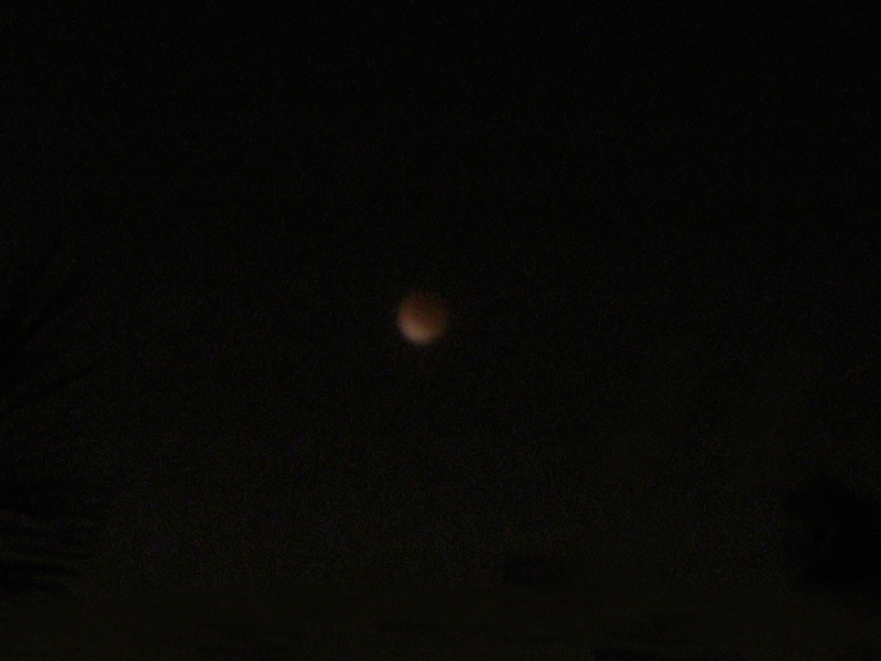 6:04 am Zoomed into photo to see what was left - mild redness