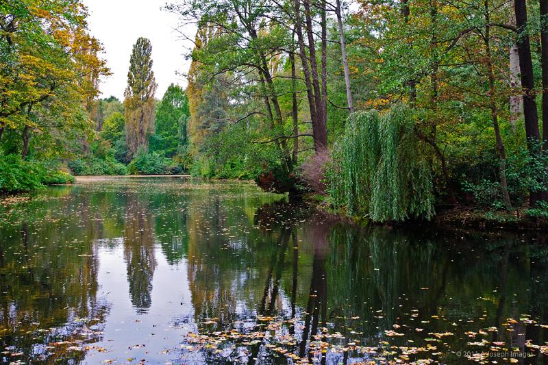 Tiergarten-DSC_5038-800.jpg