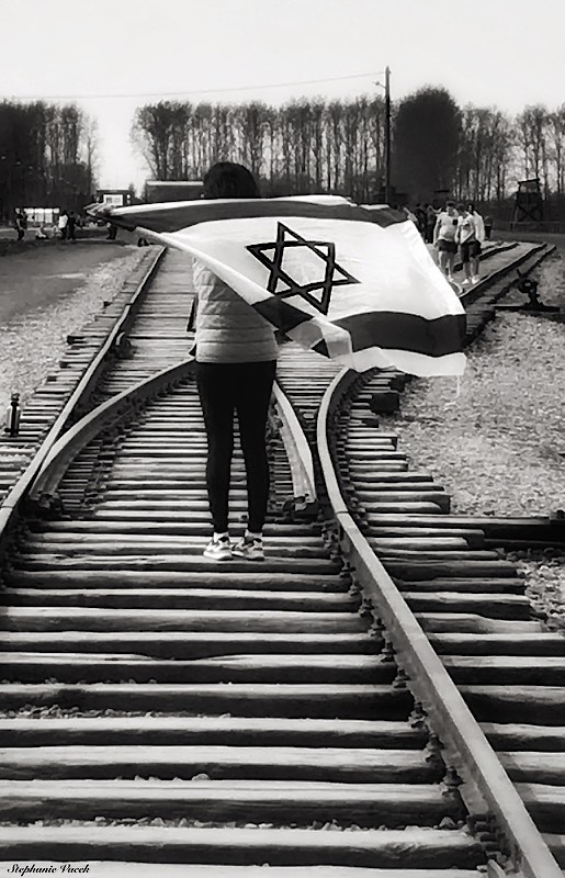 Arriving by train ~ Birkenau