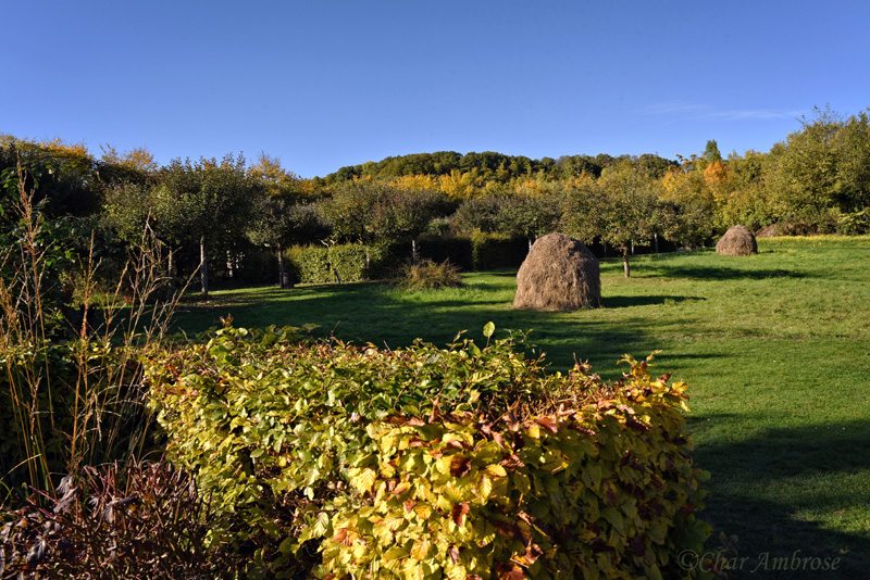 Hay Stacks in Giverny