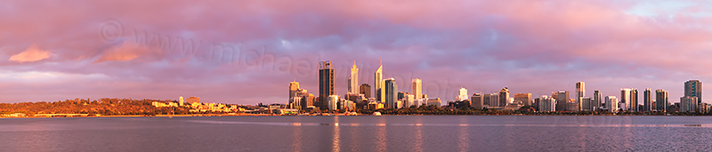 Black Swans on the Swan River at Sunrise, 17th December 2012