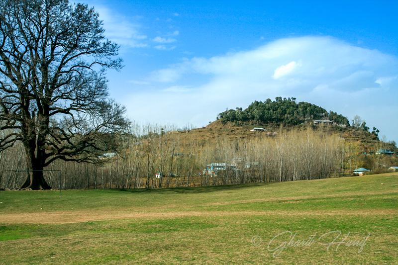 Devgali meadow