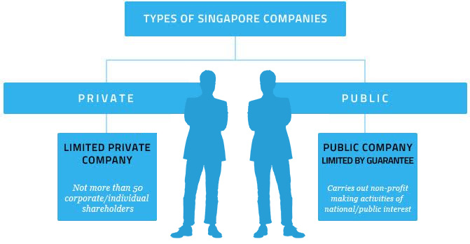 types of companies and corporation These types consist of sole proprietorships, partnerships, limited liability companies (llc), c corporations, and s corporations when determining the type of structure to use, comparison of different factors such as liability to the owners, taxation, and management controls must be conducted.