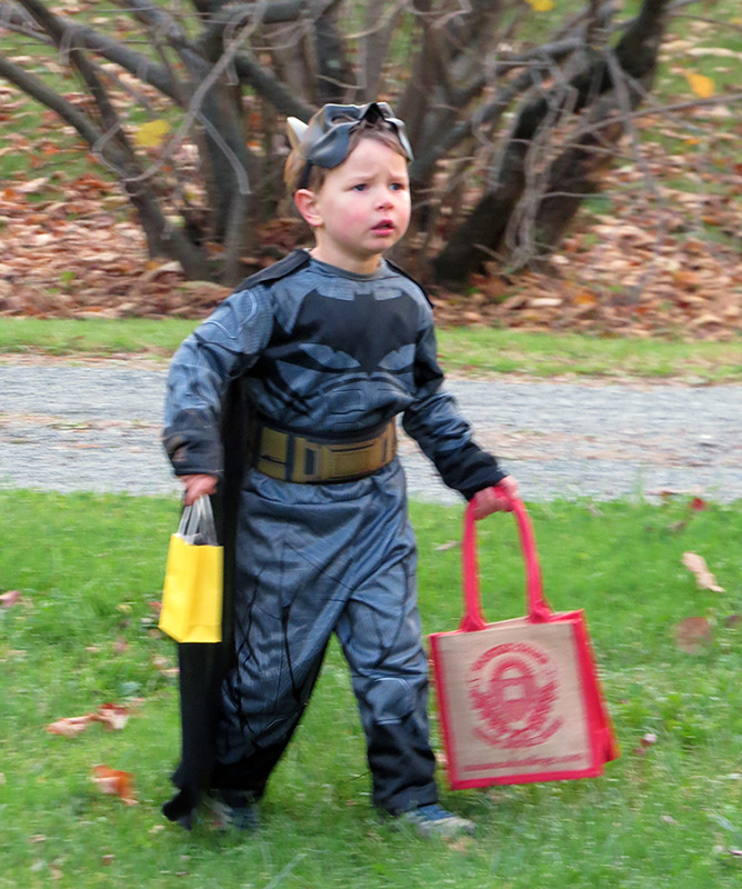 Batman with two Bags