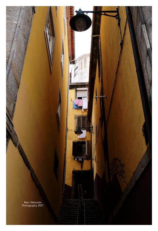 Porto 21