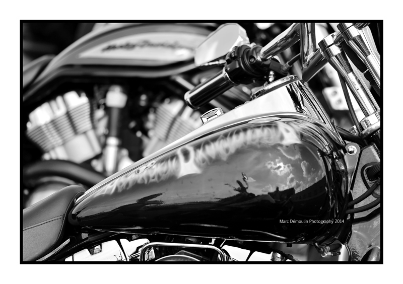 Various BW images 174